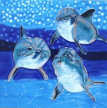 Dolphins 8x8