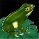 Frog 6x6