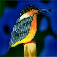 Kingfisher 6x6