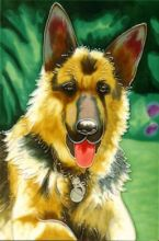 German Shepherd 8x12