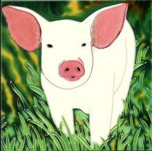 Cheeky Piglet 6x6